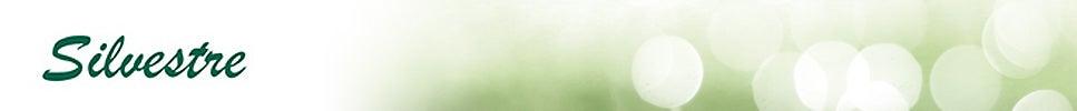 Produits - Silvestre