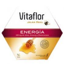 Vitaflor Energia Jalea Real 20 Ampollas