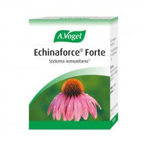 A Vogel Echinaforce Forte 30comp
